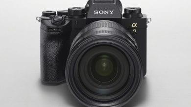 صورة تركز Sony A9 II على الجمهور المحترف – ولكن ما الميزات الجديدة؟