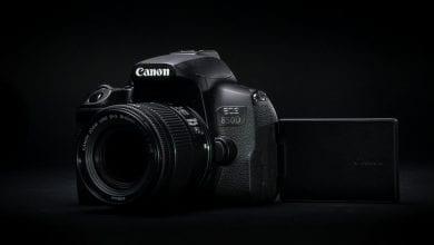 Photo of يهدف Canon EOS 850D إلى إثبات لماذا لا يزال DSLR على قيد الحياة والركل