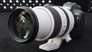 Photo of Pro-spec Canon EOS R سيجلب نظام التثبيت في الجسم ، عدسات جديدة من المقرر 2020