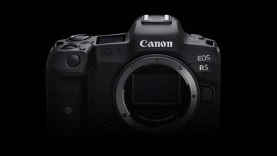Photo of لماذا تتشكل كاميرا Canon EOS R6 لتكون كاميرا أكثر إثارة من كاميرا EOS R5