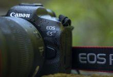 Photo of لماذا تعد كاميرا Canon EOS R5 كاميرا فيديو بارزة ، ولكنها مبالغة بالنسبة لمعظم الناس